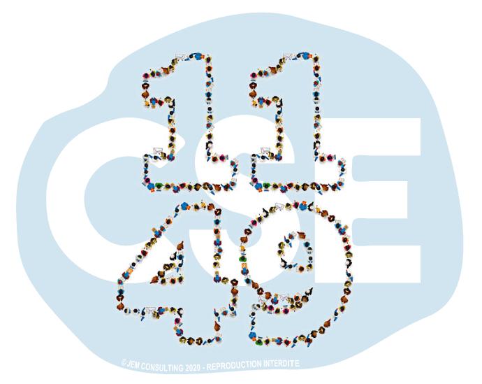 CSE dans les entreprises de 11 à 49 salariés