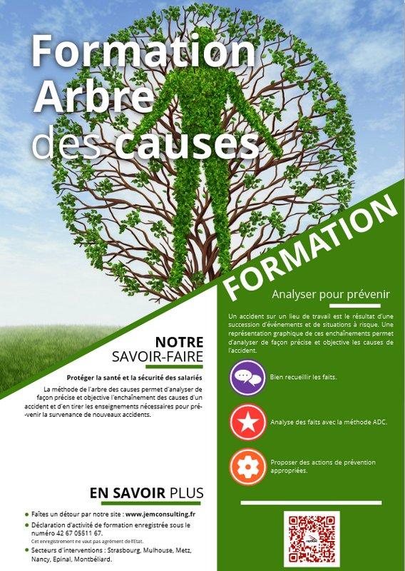 Formation arbre des causes