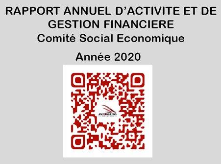 Rapport annuel d'activité et de gestion financière CSE