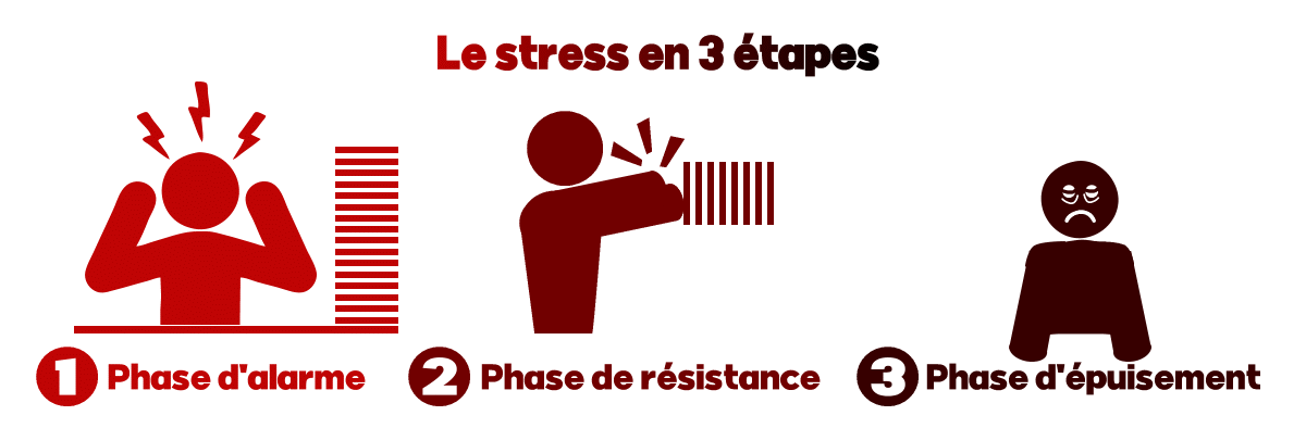 Le stress en 3 étapes